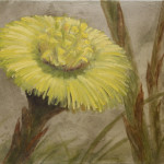 «Vårtegn I» /hestehov, akryl og olje (40x50 cm)