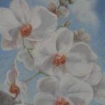 Orkidé, malt i akryl, 50x40 cm